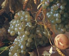 Jan Davidsz. De Heem, Dutch, 1606-1684 (detail), Still Life with Grapes, about 1660, oil on canvas. Hood Museum of Art, Dartmouth College: Purchased through the Mrs. Harvey P. Hood W'18 Fund and the Florence and Lansing Porter Moore 1937 Fund; 2006.11