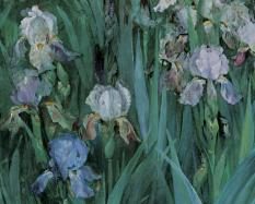 Maria Oakey Dewing, American, 1845 - 1927, Iris at Dawn (Iris) (detail), 1899, oil on canvas.