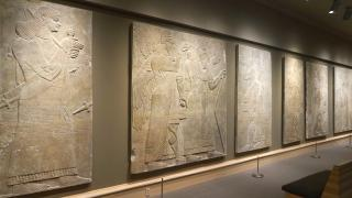 The Hood's Assyrian reliefs, from the Northwest Palace of Ashurnasirpal II at Nimrud, 883-889 BCE, in Kim Gallery. Photo by Alison Palizzolo.