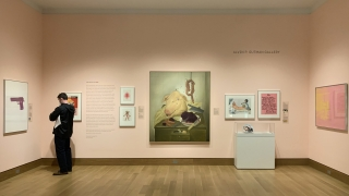 """The Politics of Pink"" installed in the Hood Museum's Gutman Gallery. Photo by Alison Palizzolo."