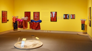 Dressing Up Culture: Molas from Kuna Yala installed in the Hood Museum's Gutman Gallery. Photo by Jeffrey Nintzel.
