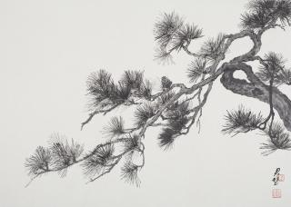 Fan Tchunpi, Pine Branches