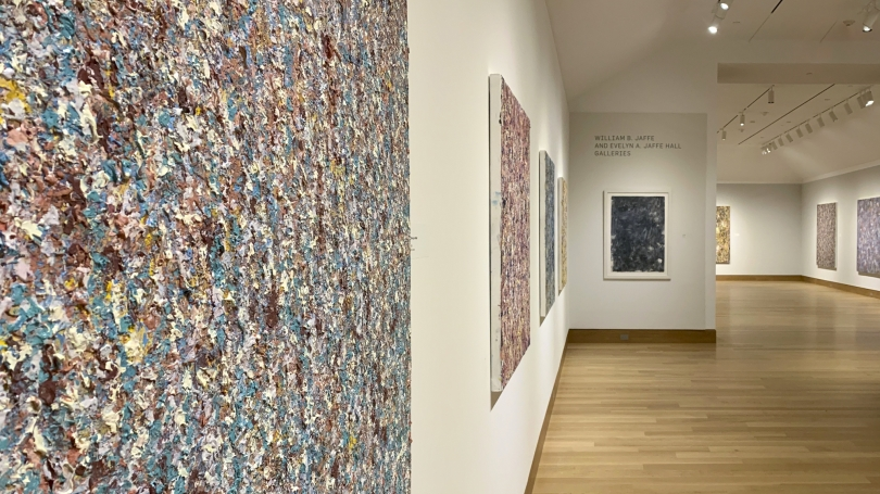 """""""In the Midst of Something Splendid: Recent Paintings by Colleen Randall"""" on view through May 31. Photo by Alison Palizzolo."""