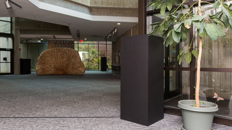Fig. 6. View of the two of four first-floor speakers and the electronics box for Jacob Kirkegaard's Transmission, 2017, Sherman Fairchild Physical Sciences Center. Photo by Joseph Beaudoin.