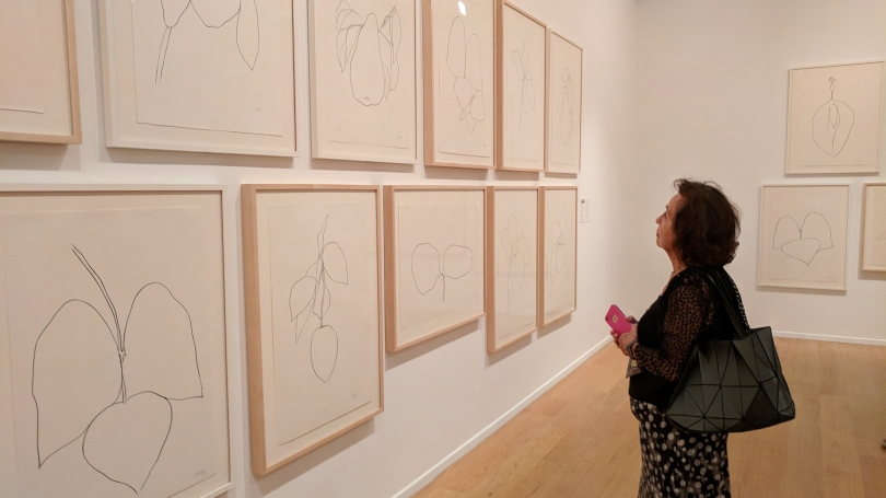Director's Circle member Linda Roesch views drawings by Ellsworth Kelly on view in Line & Color: The Nature of Ellsworth Kelly at the Norton Simon Museum. Photo by Deborah Tober.