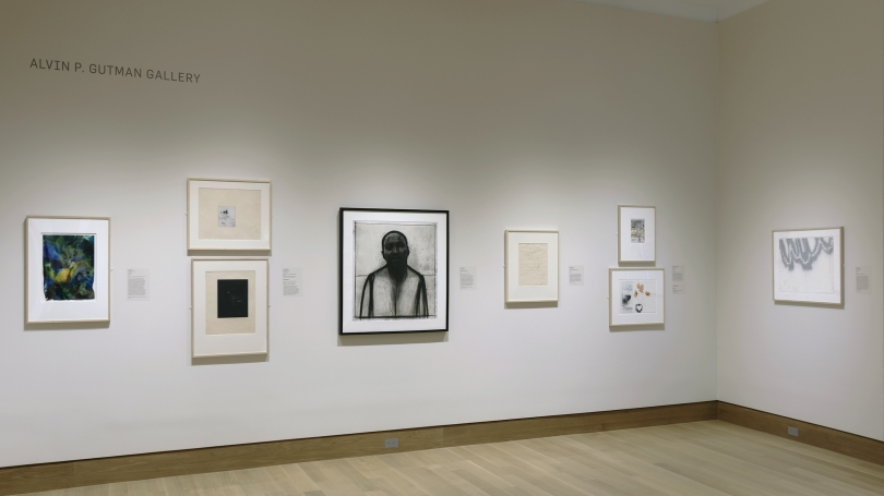 A photograph of a museum gallery installation featuring works by Black artists.