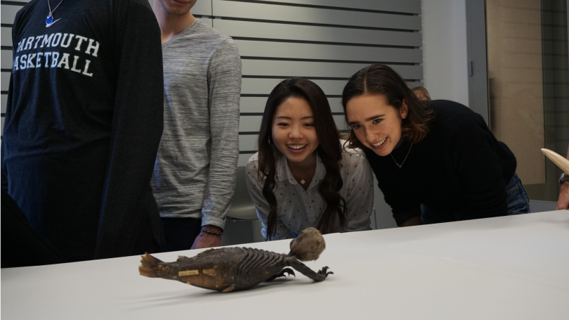 """Students in the psychology course """"Credulity and Pseudoscience"""" view a """"Fiji mermaid"""" from 19th-century Japan.  Photo by Brian Wagner."""