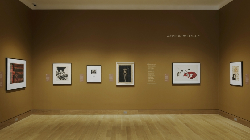 A photograph of a museum gallery and installation. The walls are a dark warm brown and there are seven framed works hung on the walls.