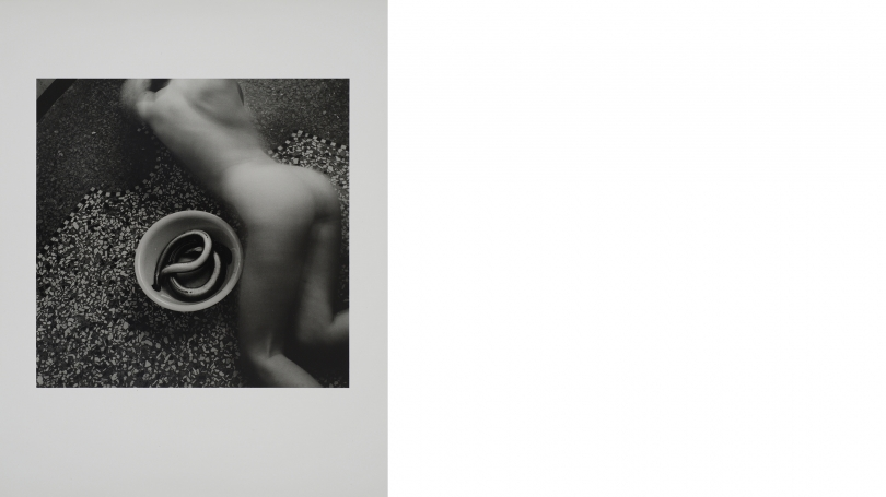 Francesca Woodman, Untitled, from Eel Series, Rome, 1977–78, estate gelatin silver print, edition 15 of 40, printed 1999–2001. Purchased through the Elizabeth and David C. Lowenstein '67 fund; 2013.13. © George and Betty Woodman